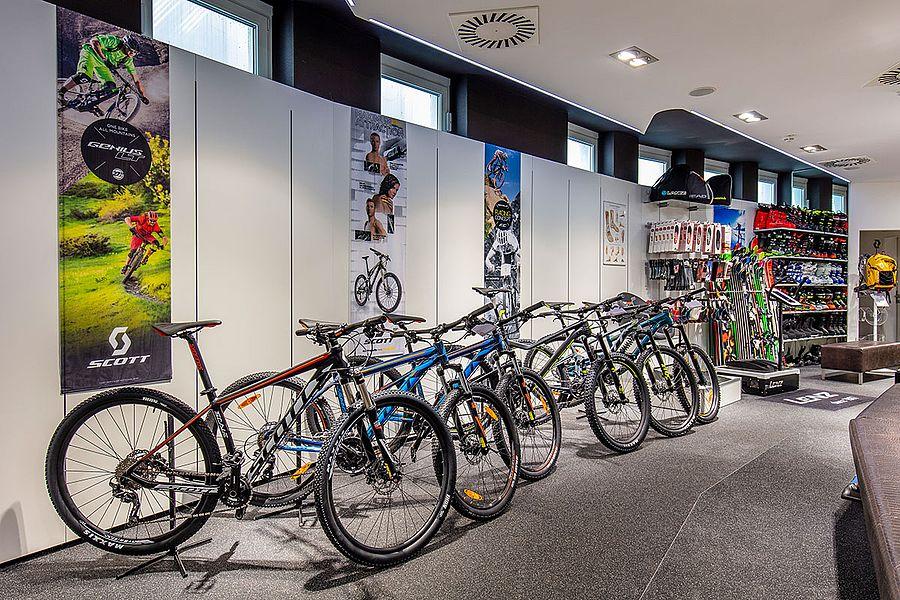 Bicycle rental -15%